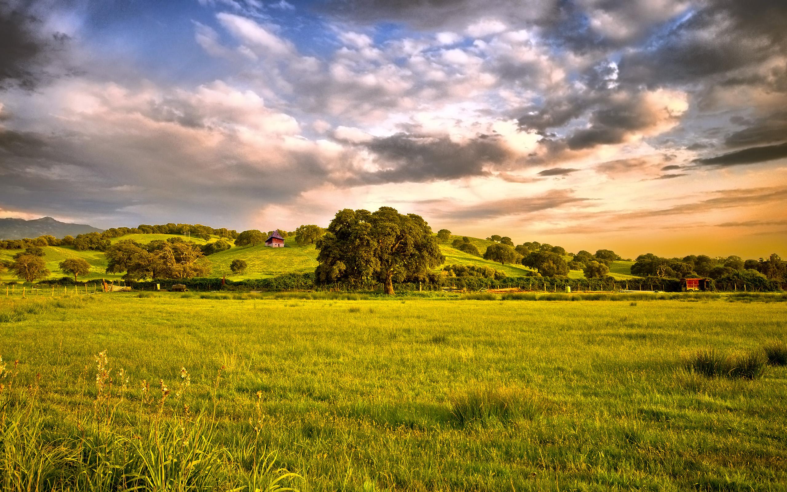 Grass Landscape Grass landscape images idealstalist grass landscape images workwithnaturefo