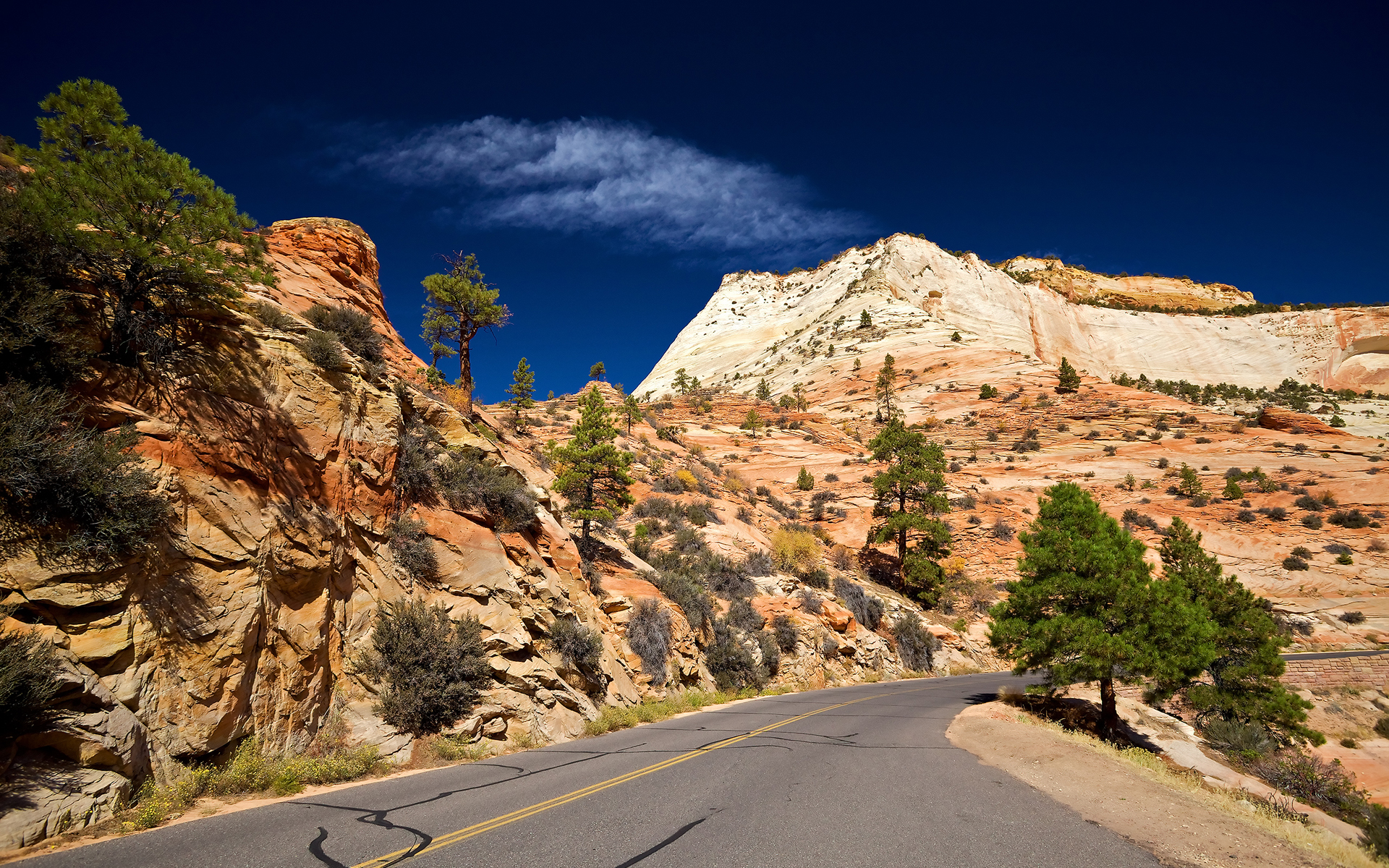 way to Zion National Park
