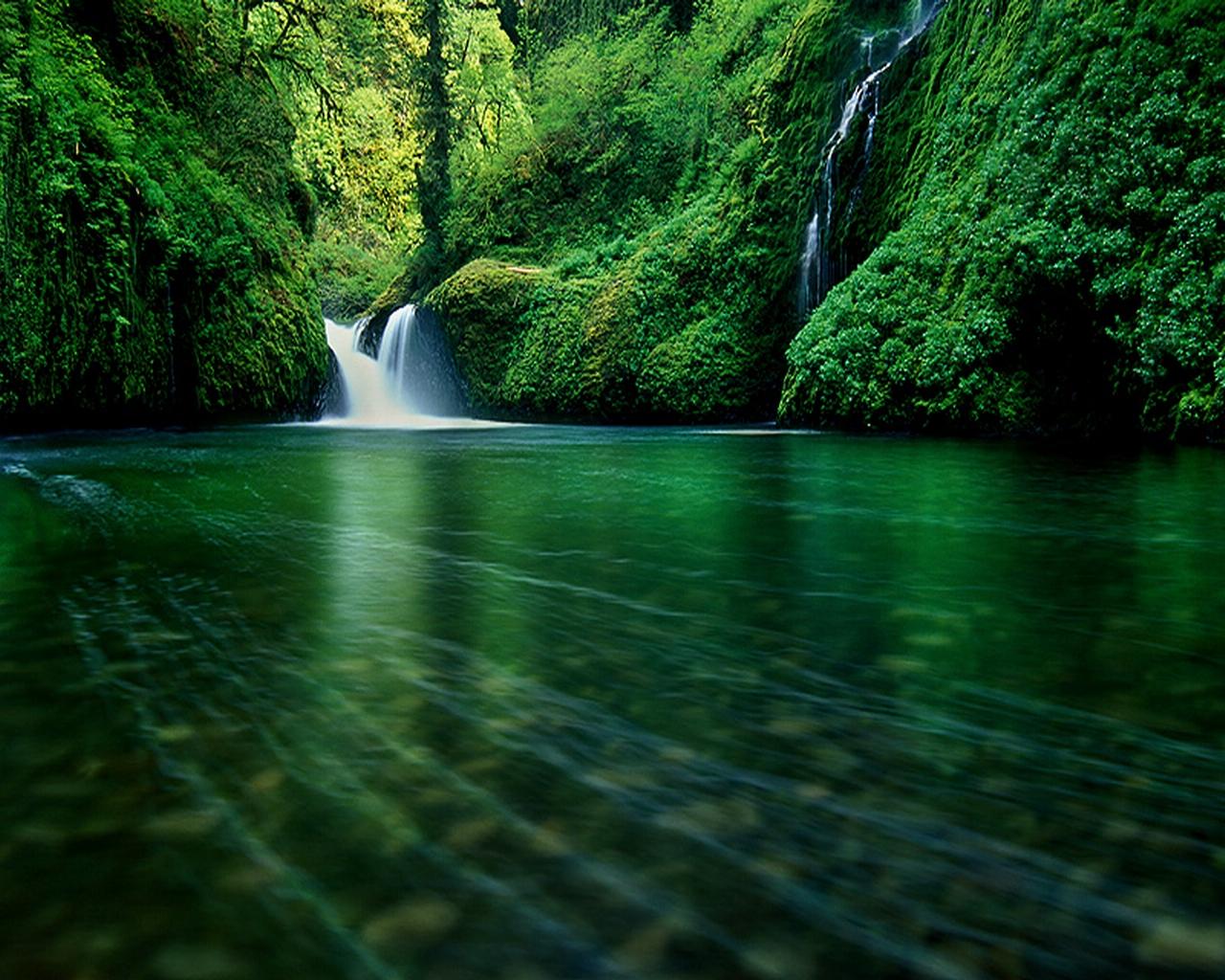 Eagle creek wilderness oregon desktop wallpaper - Oregon nature wallpaper ...