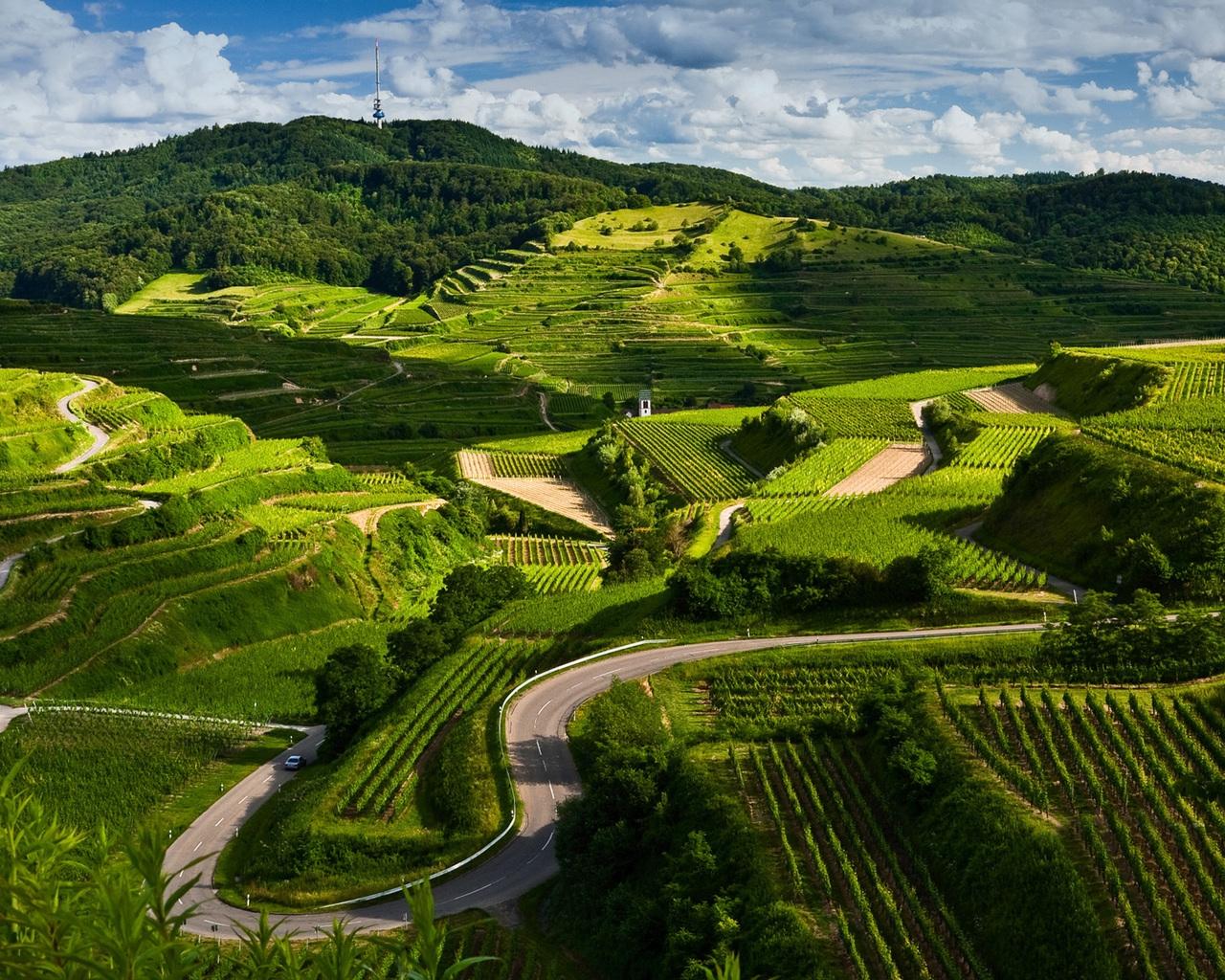green fields labyrinth HD by claudiu d  - Desktop Wallpaper