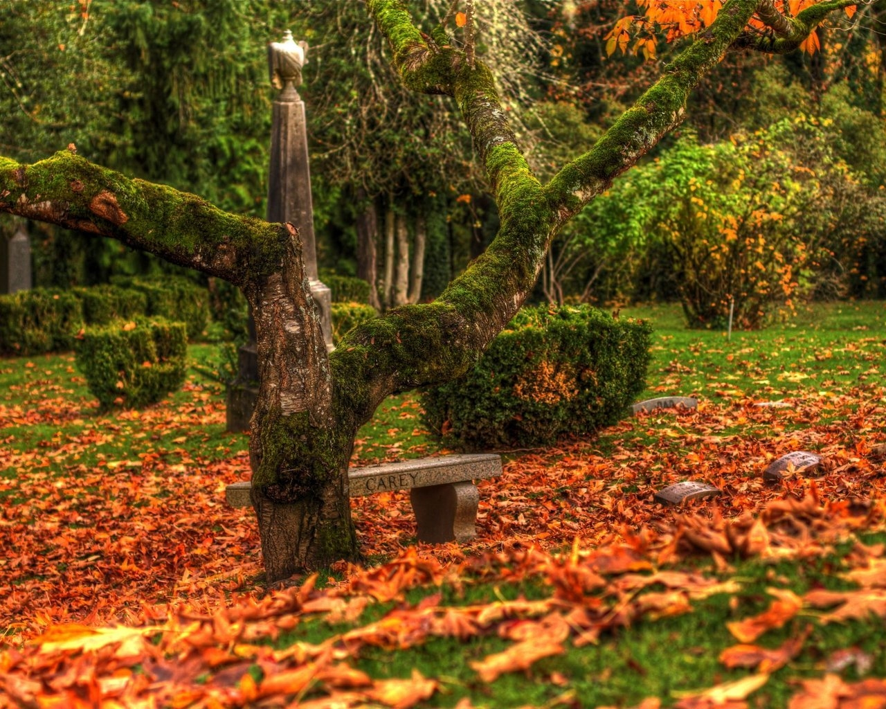 beautiful autumn scenery hdclaudiu d. - desktop wallpaper