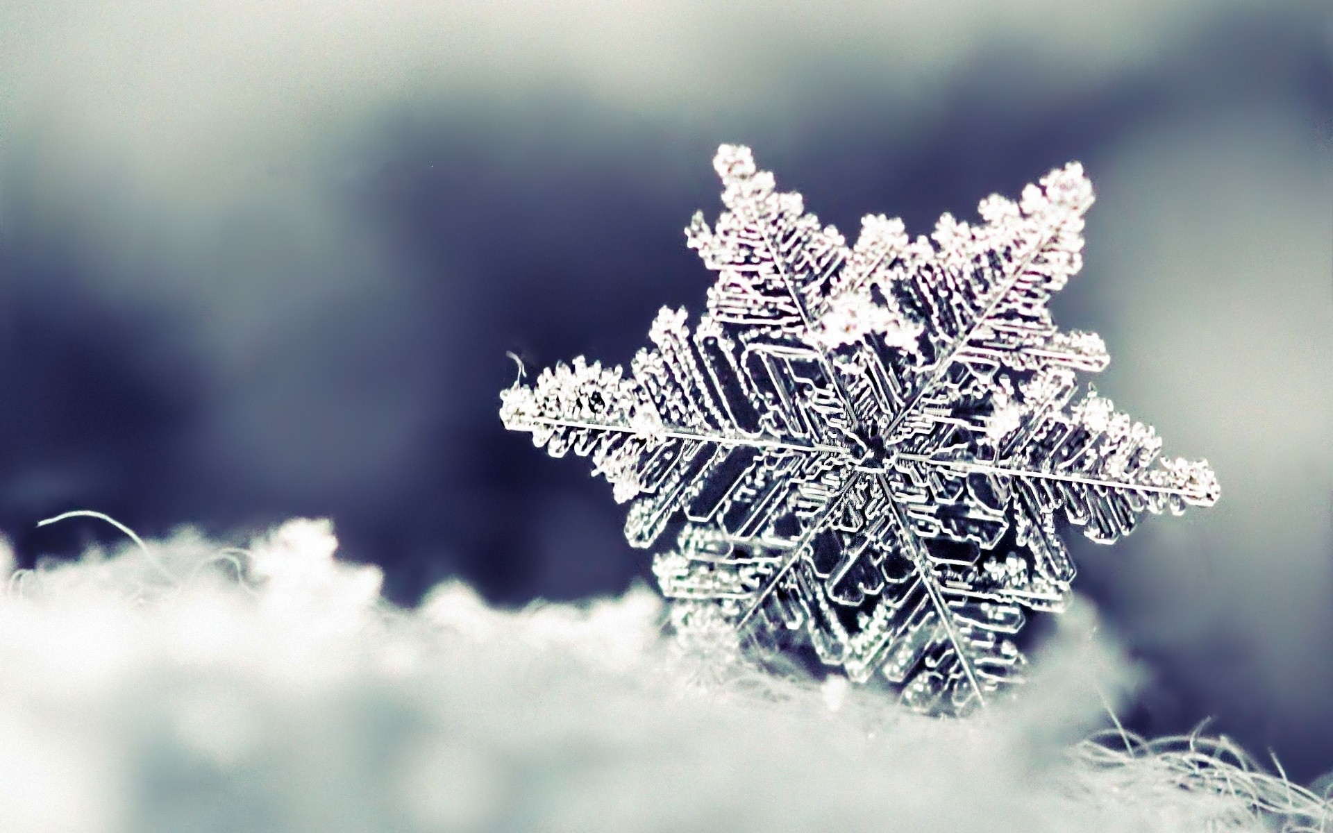 Snowflake desktop wallpaper snowflake voltagebd Choice Image