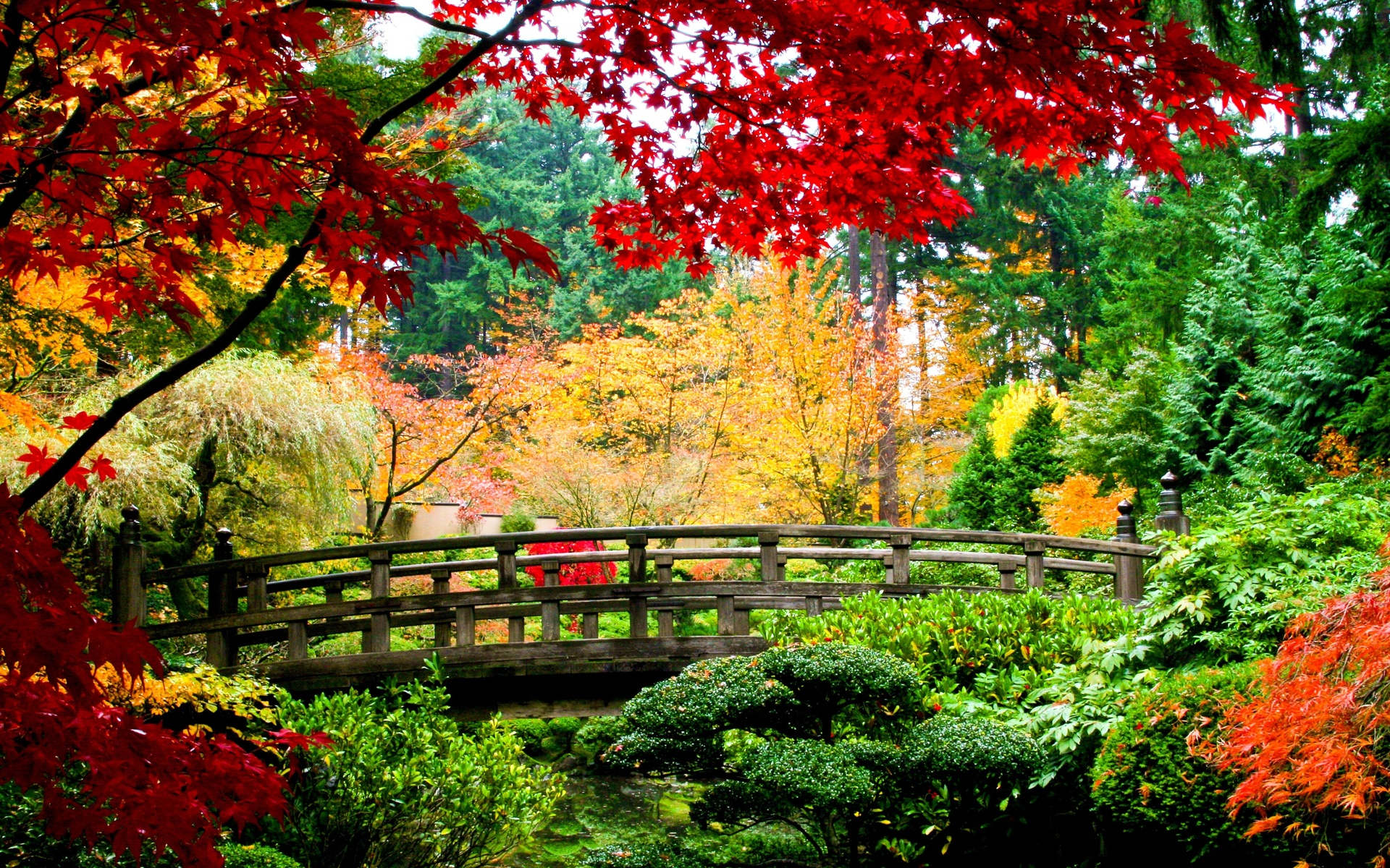 Asian Garden Art Part - 38: Asian Garden