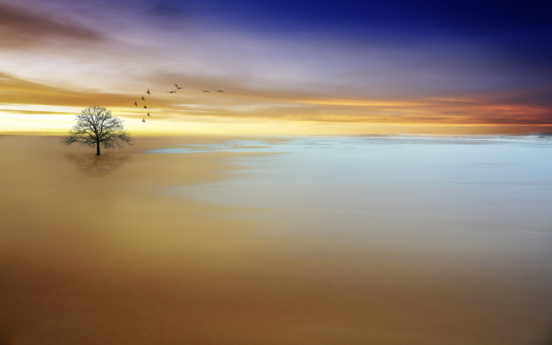 tranquility wallpaper forwallpapercom - photo #14