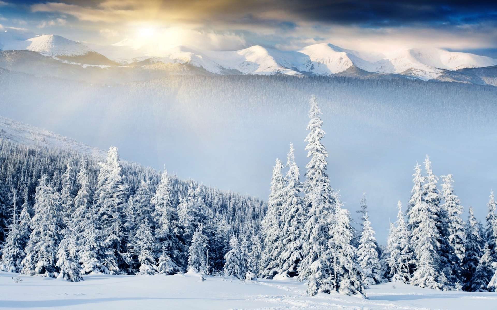 snow scenery full hd - photo #43