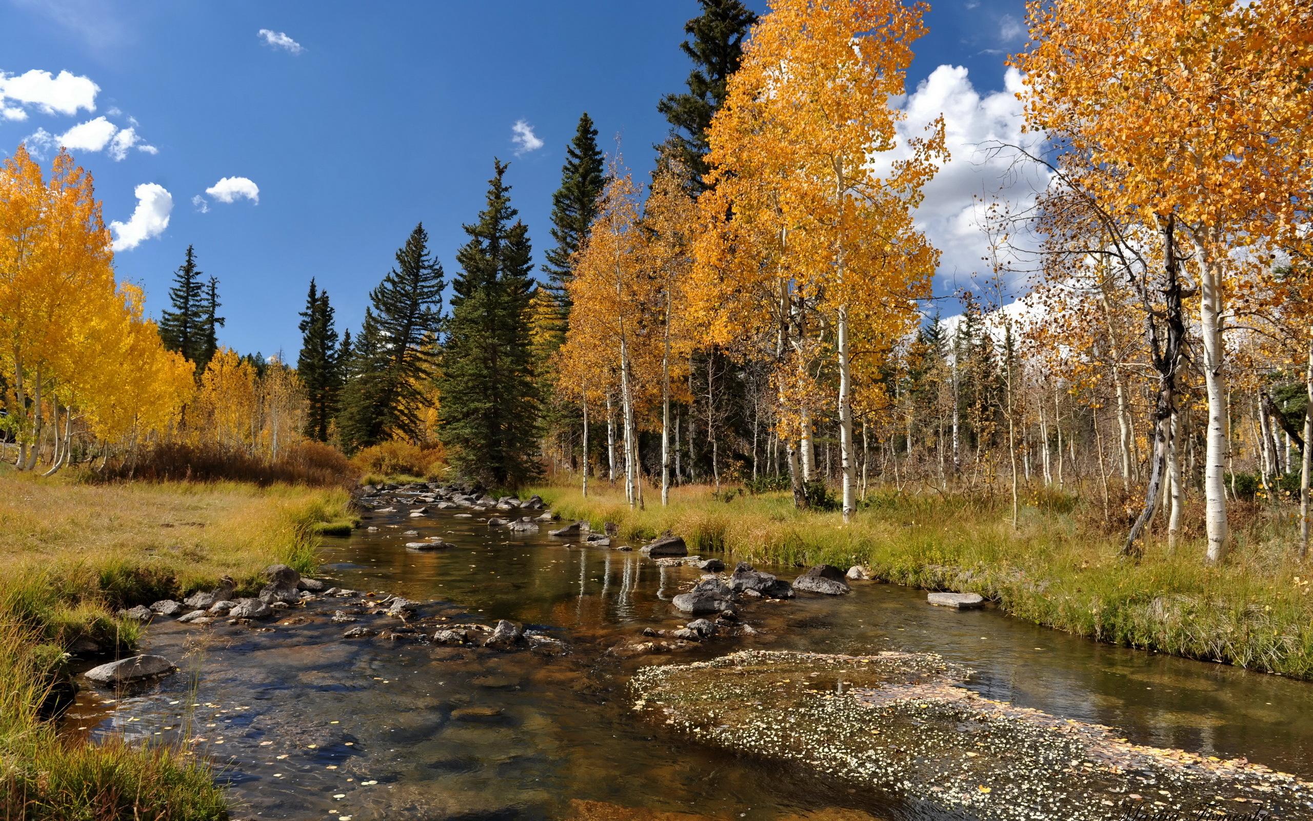 Autumn Scene Desktop Wallpaper