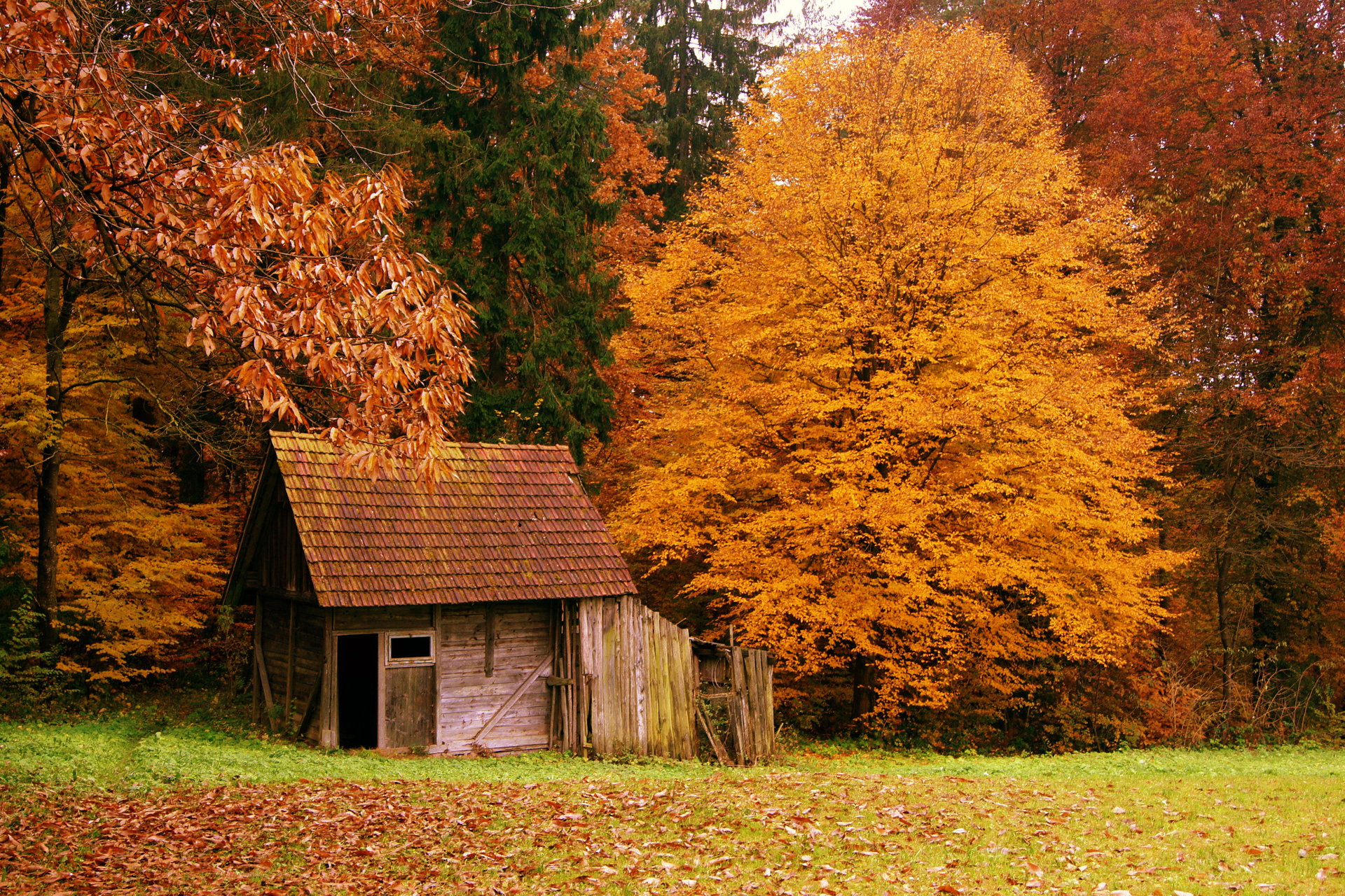 autumn cabin wallpaper desktop - photo #8