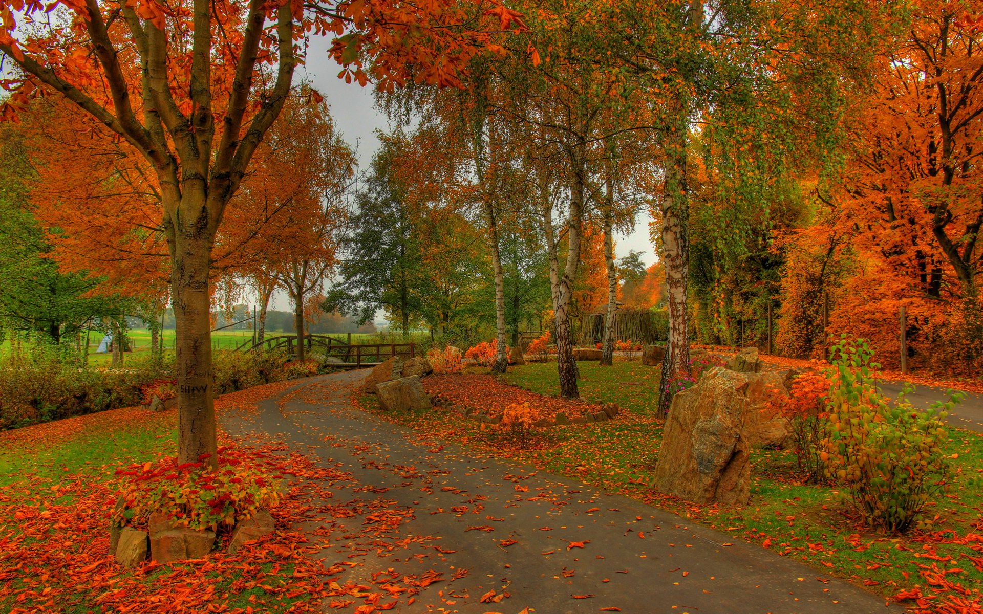 hdr autumn colors