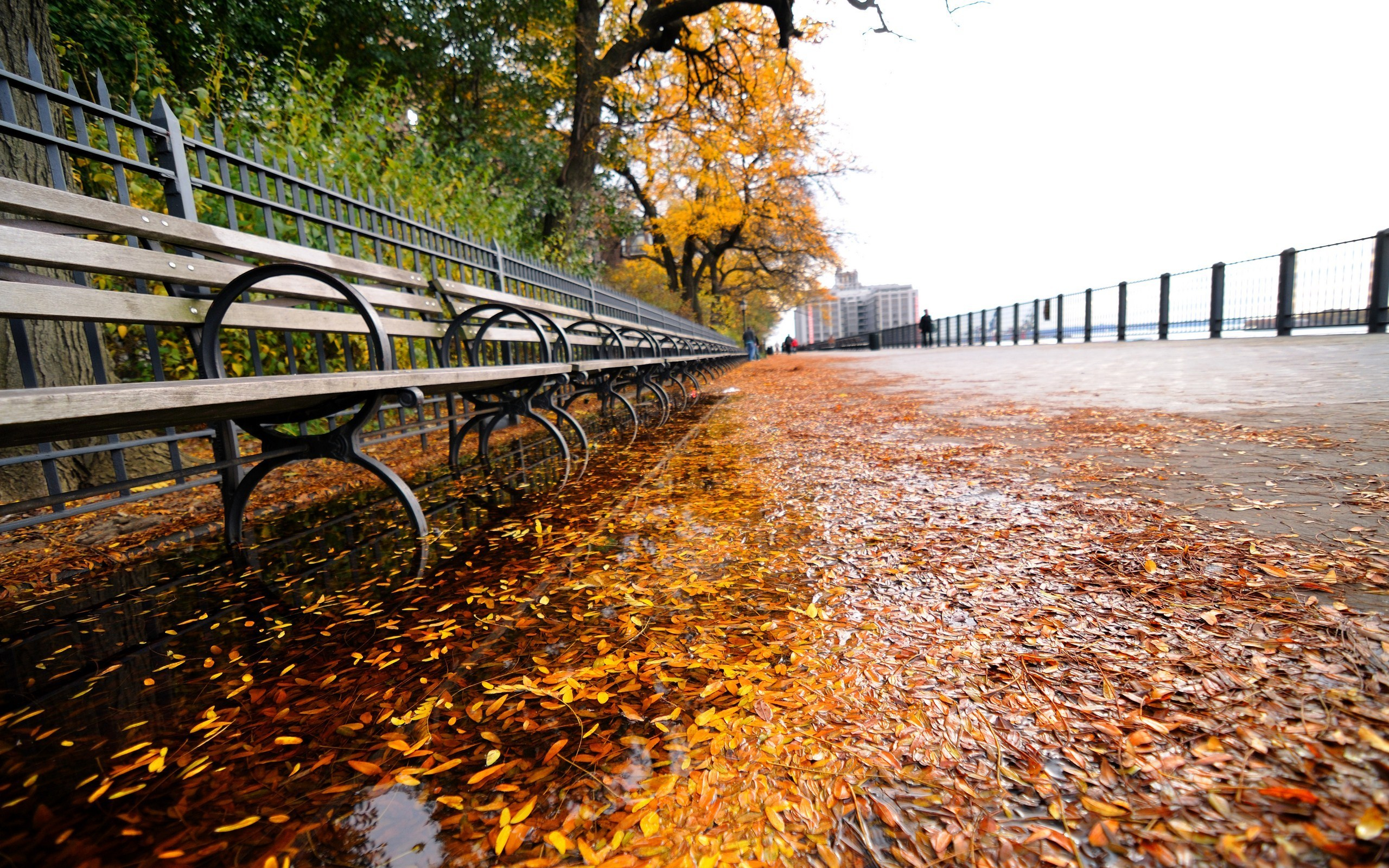 New York Waterfront Autumn Scene Desktop Wallpaper