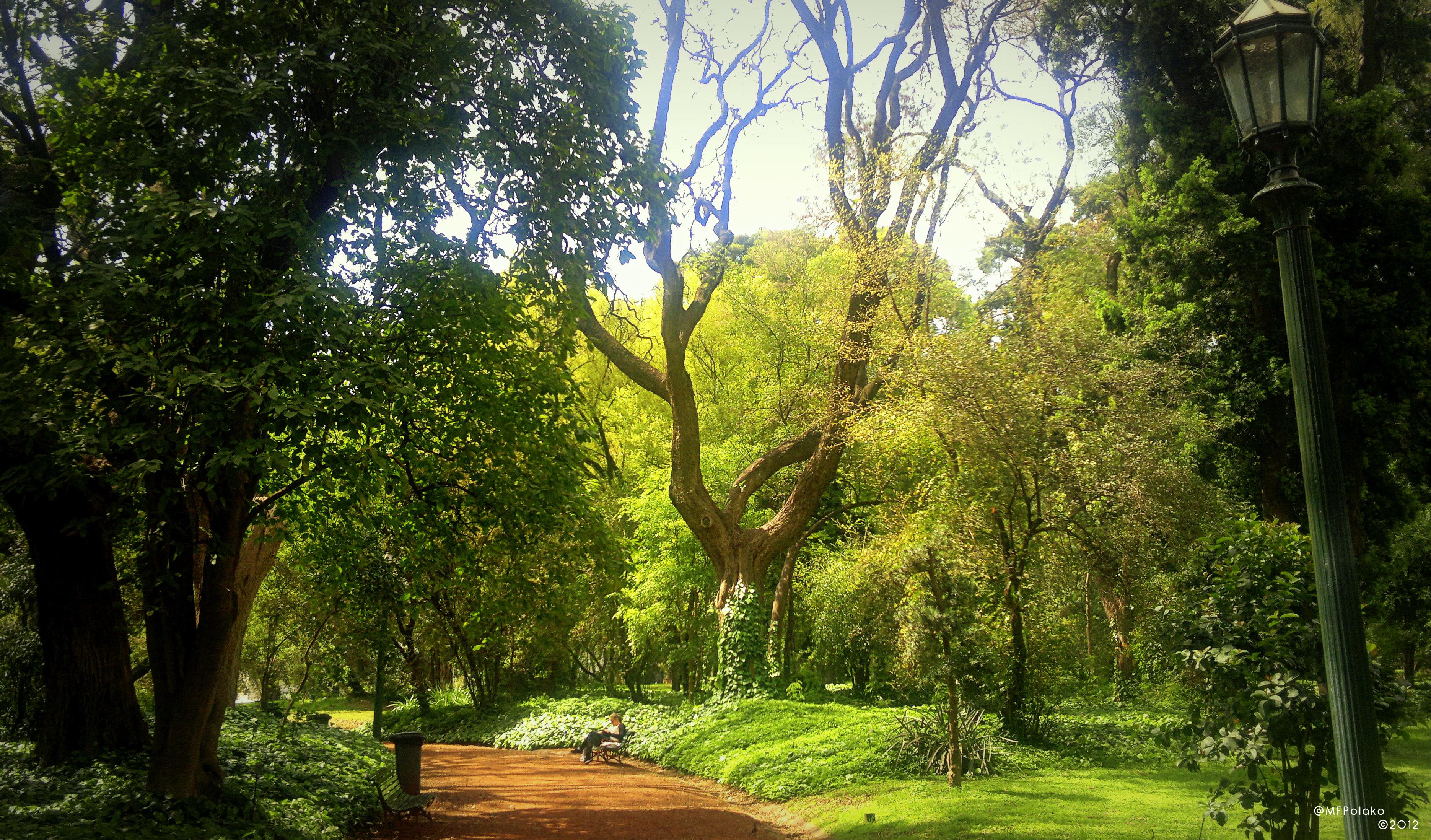 Buenos Aires Botanical Garden Desktop Wallpaper